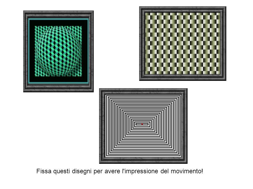 Fissa questi disegni per avere l impressione del movimento!
