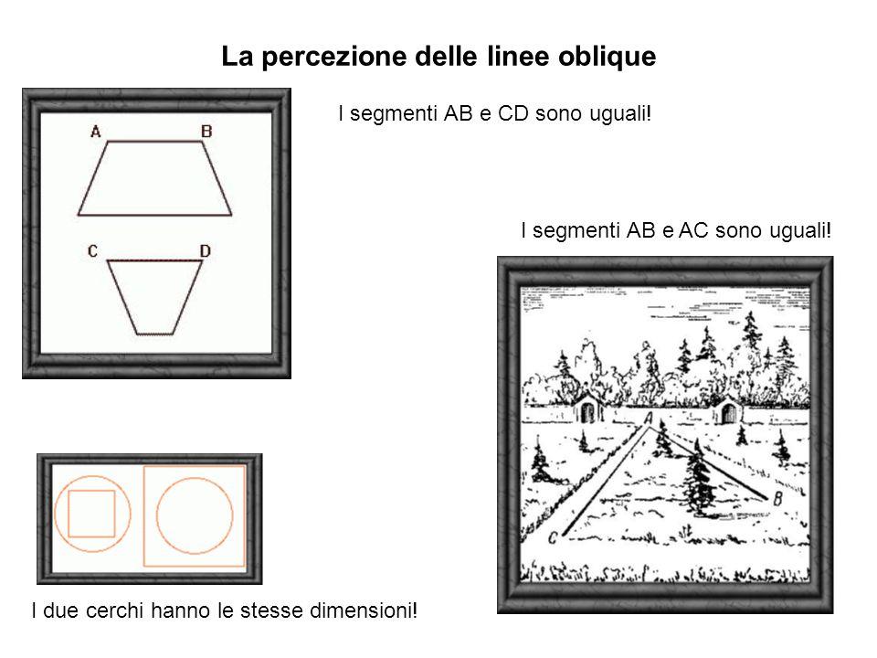 La percezione delle linee oblique