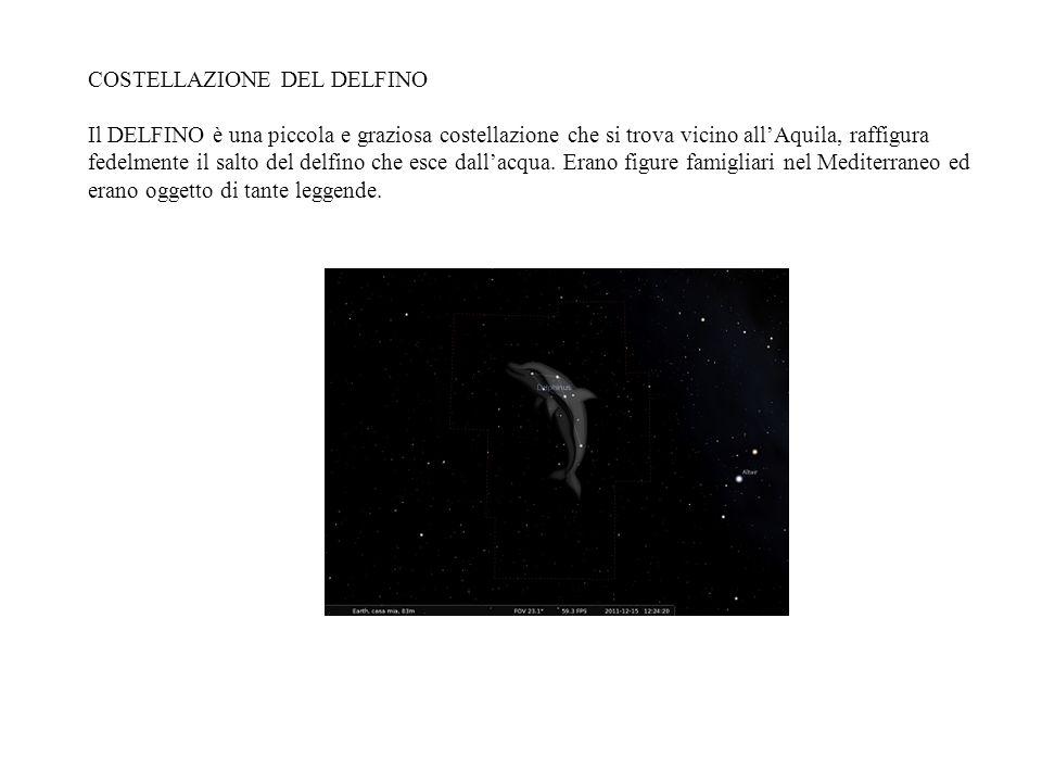 COSTELLAZIONE DEL DELFINO