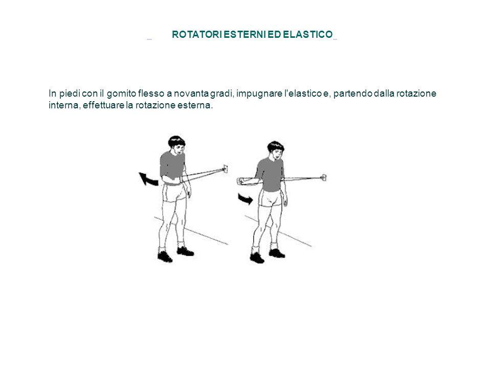 ROTATORI ESTERNI ED ELASTICO