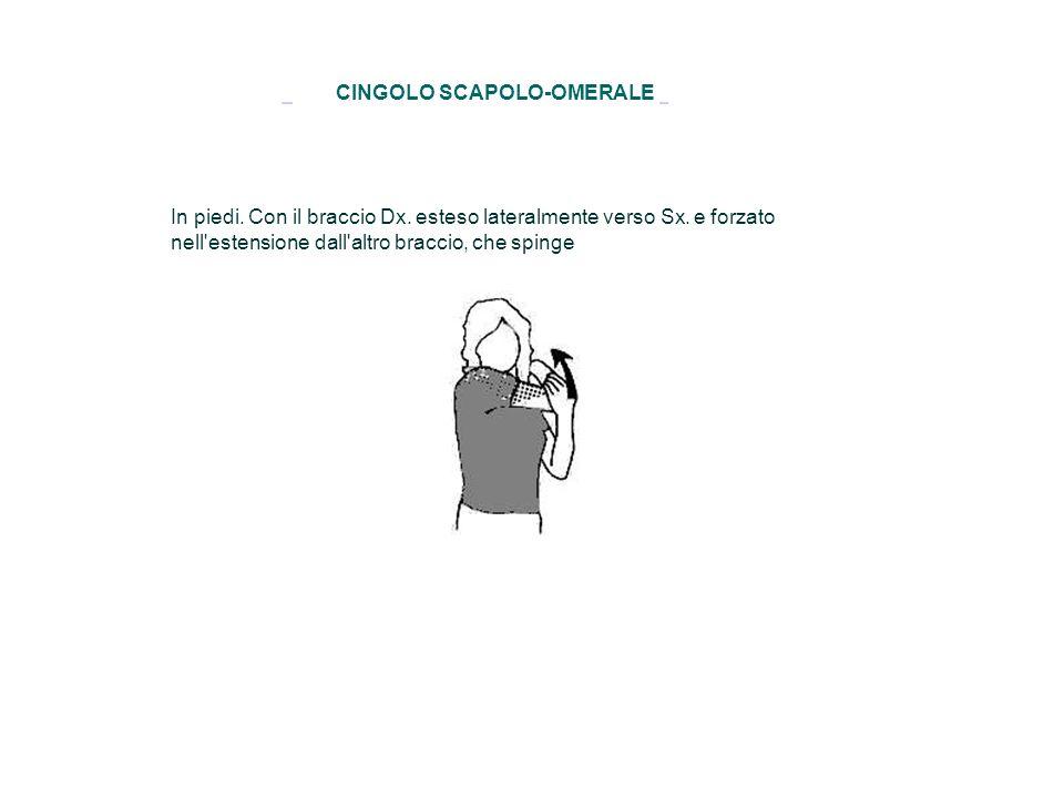 CINGOLO SCAPOLO-OMERALE