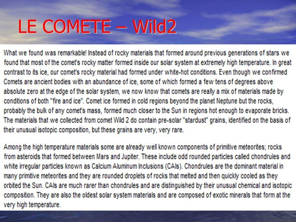 LE COMETE – Wild2