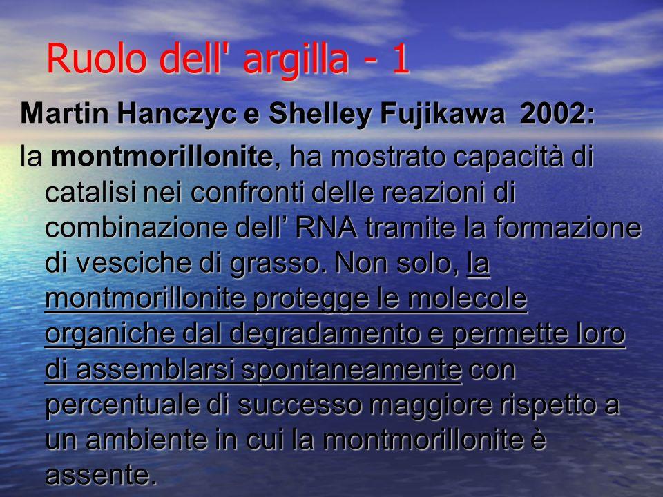 Ruolo dell argilla - 1 Martin Hanczyc e Shelley Fujikawa 2002: