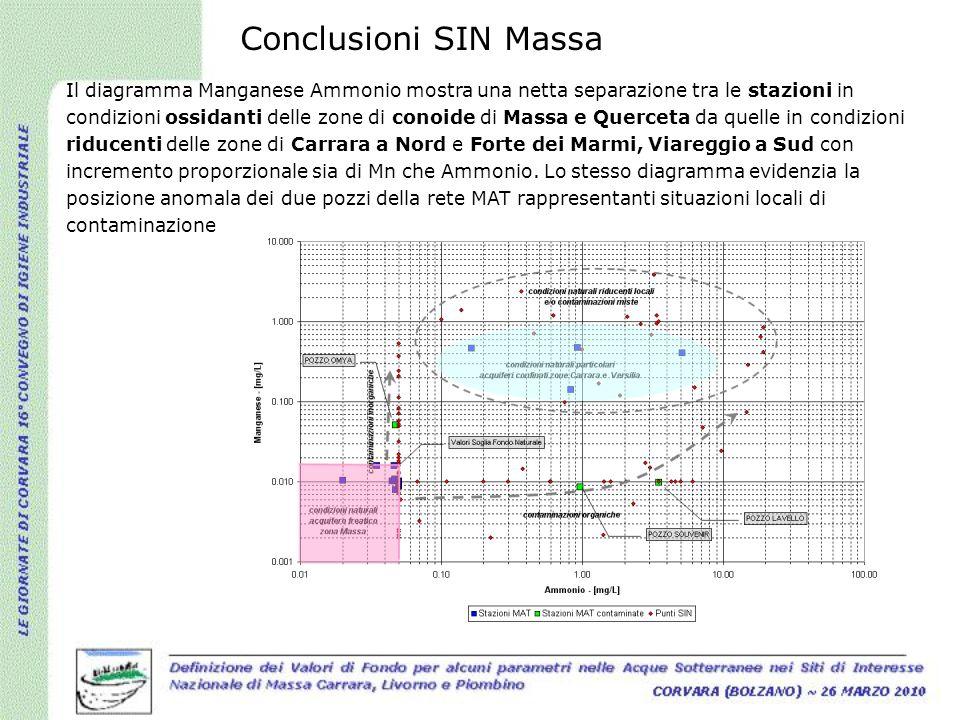 Conclusioni SIN Massa