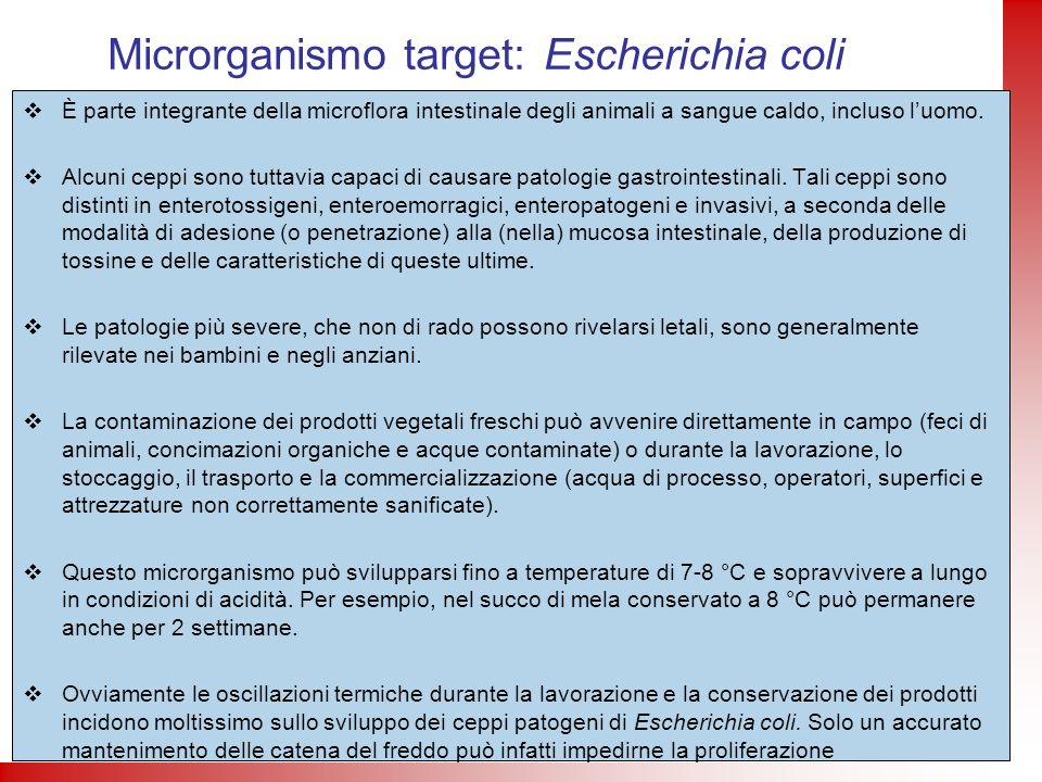 Microrganismo target: Escherichia coli