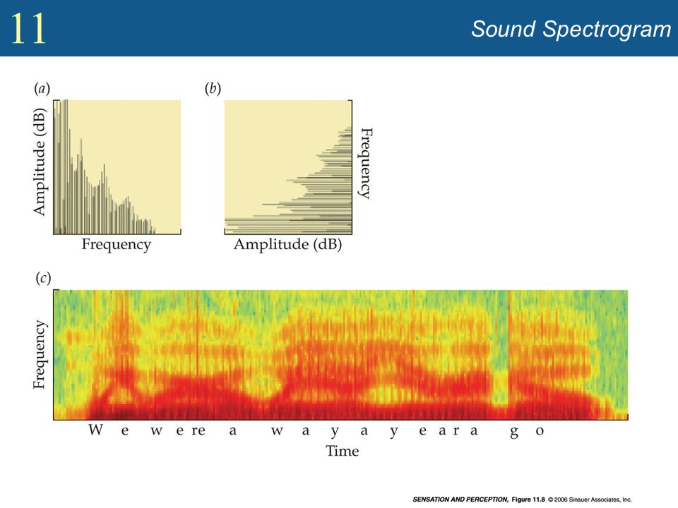 Sound Spectrogram Show frequency spectra, spectrogram (Figure 11.8).