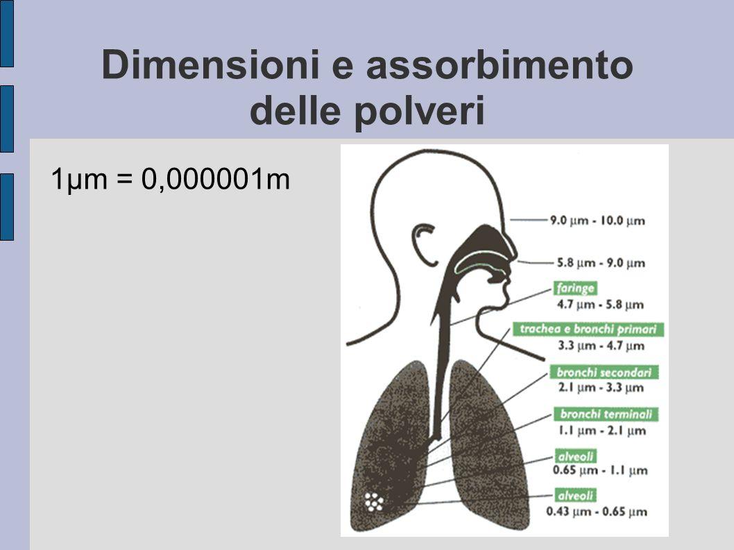 Dimensioni e assorbimento delle polveri
