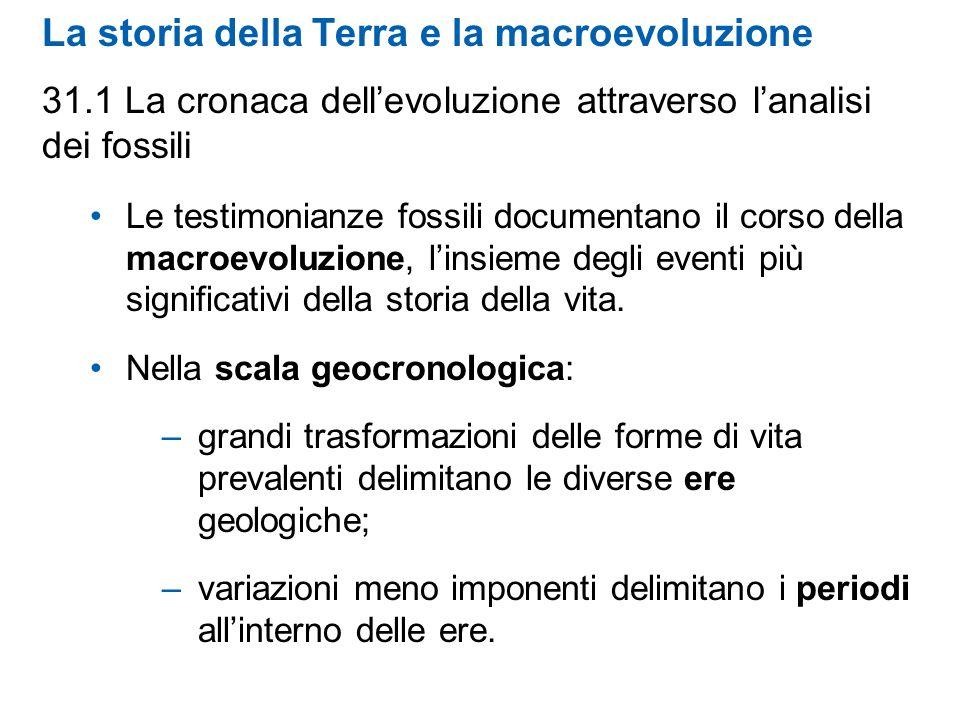 La storia della Terra e la macroevoluzione