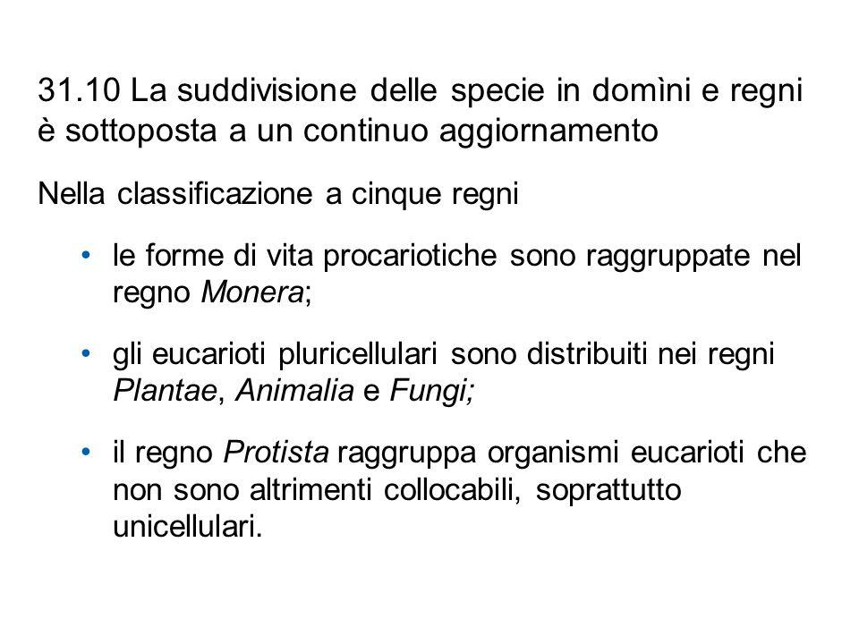31.10 La suddivisione delle specie in domìni e regni è sottoposta a un continuo aggiornamento