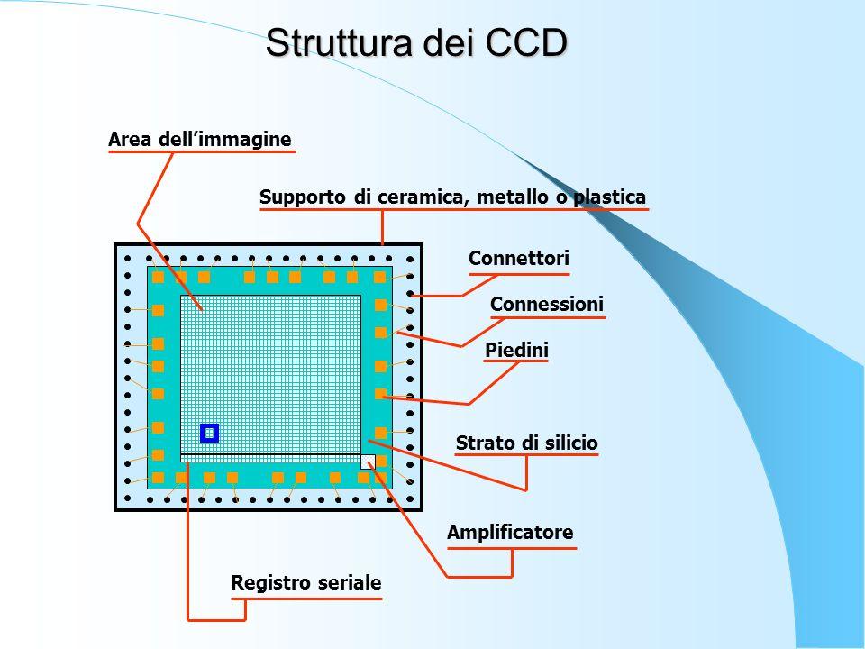 Struttura dei CCD Area dell'immagine Connessioni Piedini