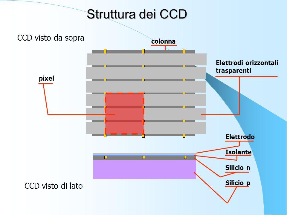 Struttura dei CCD CCD visto da sopra CCD visto di lato colonna