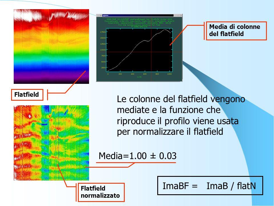 Le colonne del flatfield vengono mediate e la funzione che