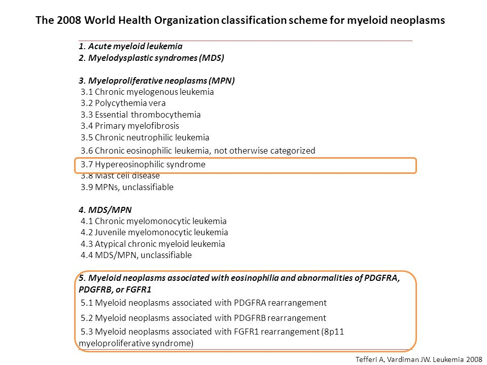 The 2008 World Health Organization classification scheme for myeloid neoplasms