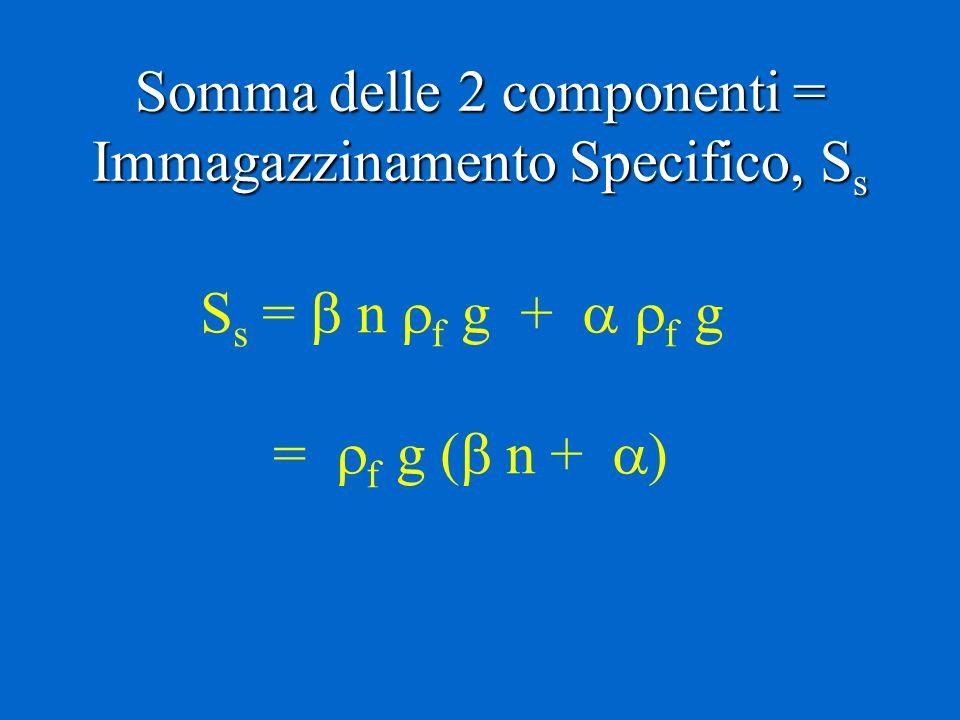 Somma delle 2 componenti = Immagazzinamento Specifico, Ss
