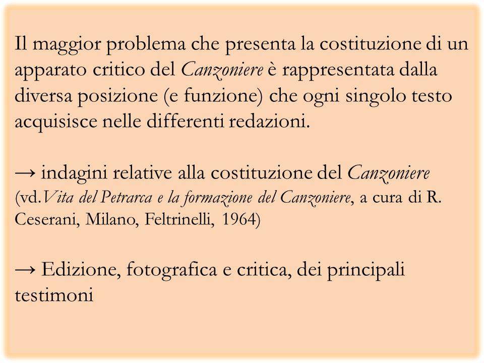 Il maggior problema che presenta la costituzione di un apparato critico del Canzoniere è rappresentata dalla diversa posizione (e funzione) che ogni singolo testo acquisisce nelle differenti redazioni.