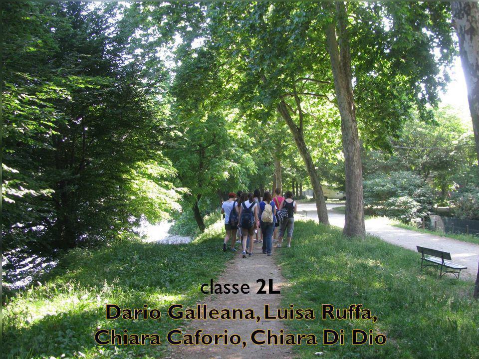Dario Galleana, Luisa Ruffa, Chiara Caforio, Chiara Di Dio