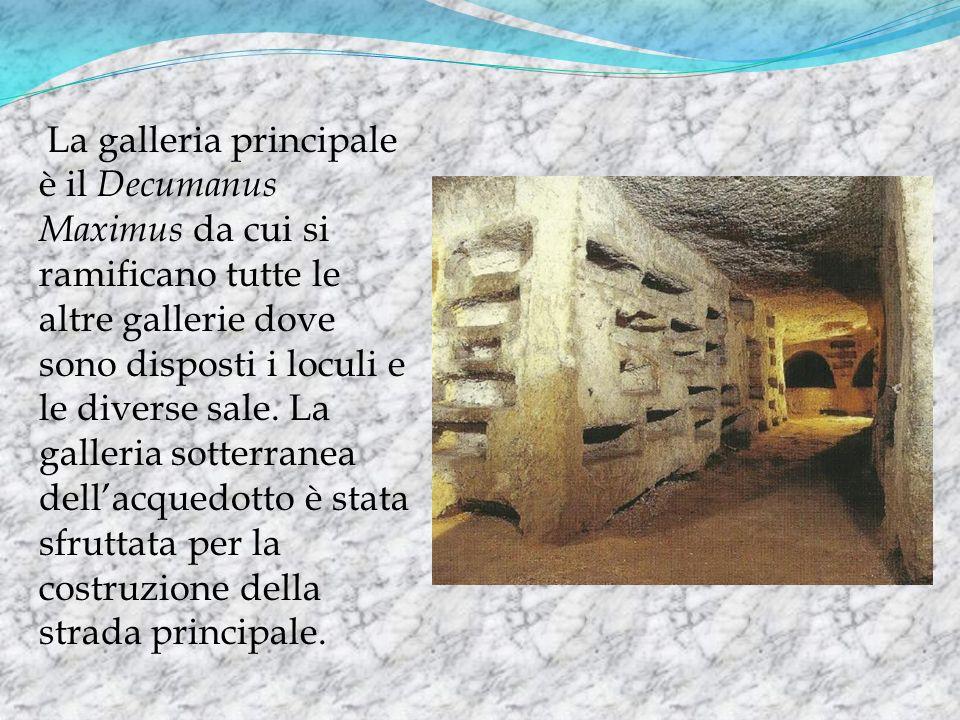 La galleria principale è il Decumanus Maximus da cui si ramificano tutte le altre gallerie dove sono disposti i loculi e le diverse sale.