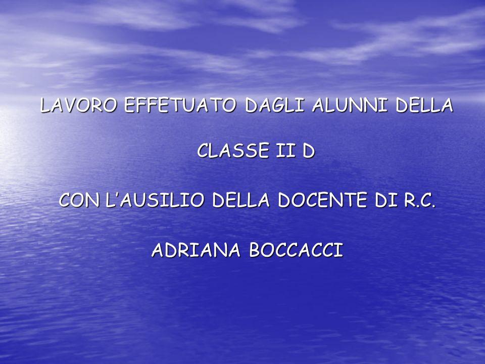 LAVORO EFFETUATO DAGLI ALUNNI DELLA CLASSE II D