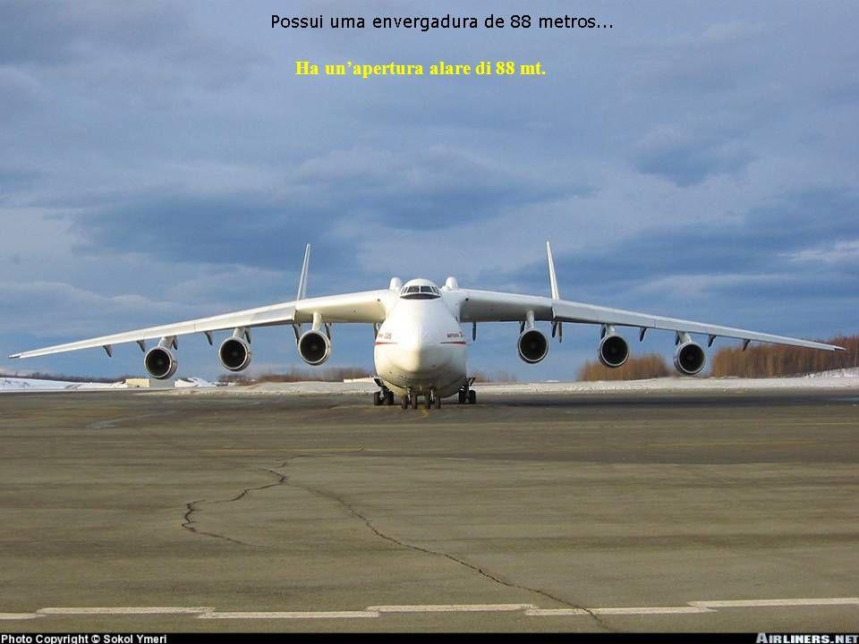 Ha un'apertura alare di 88 mt.