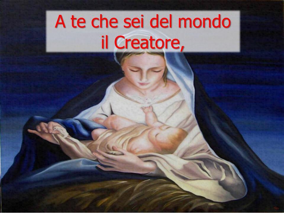 A te che sei del mondo il Creatore,