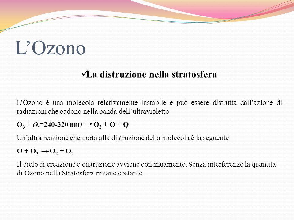 L'Ozono La distruzione nella stratosfera
