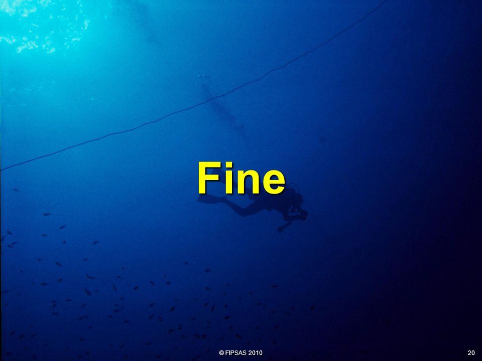 Fine 20
