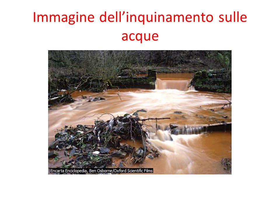 Immagine dell'inquinamento sulle acque