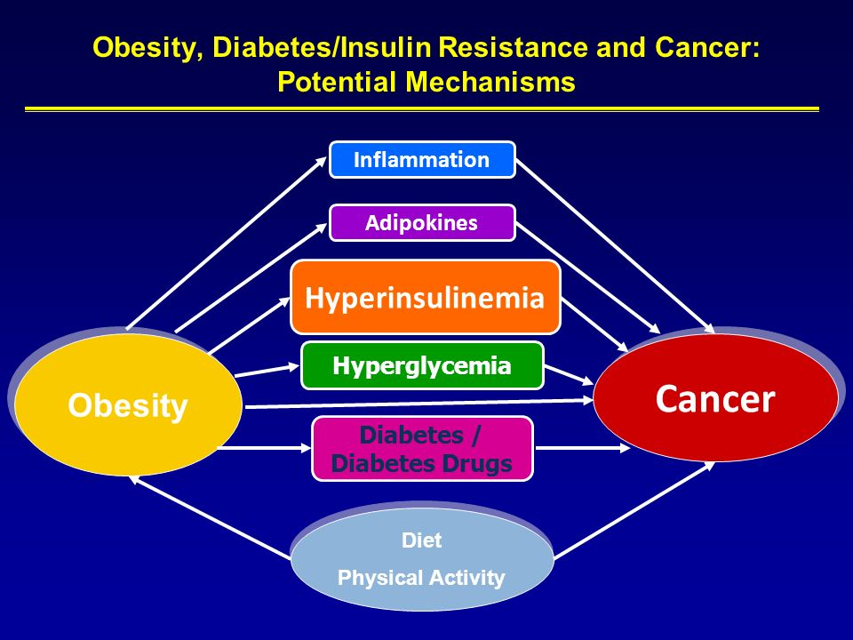 Obesity, Diabetes/Insulin Resistance and Cancer: Potential Mechanisms