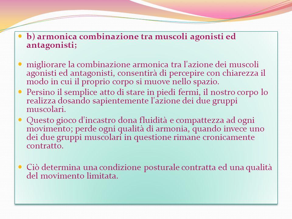 b) armonica combinazione tra muscoli agonisti ed antagonisti;