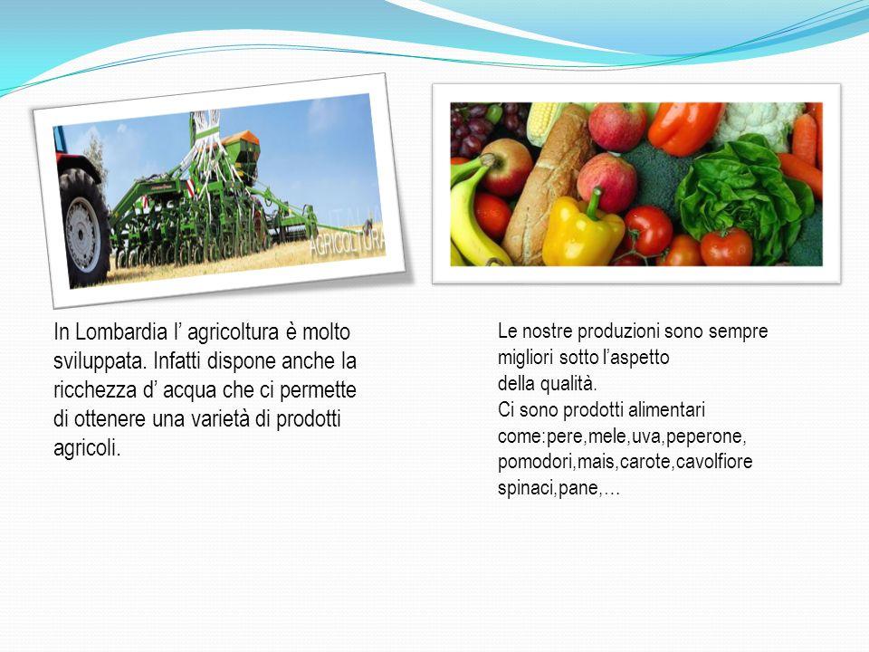 In Lombardia l' agricoltura è molto