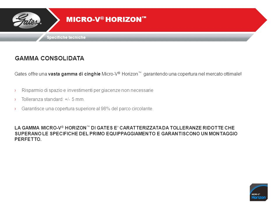 MICRO-V® HORIZON™ GAMMA CONSOLIDATA
