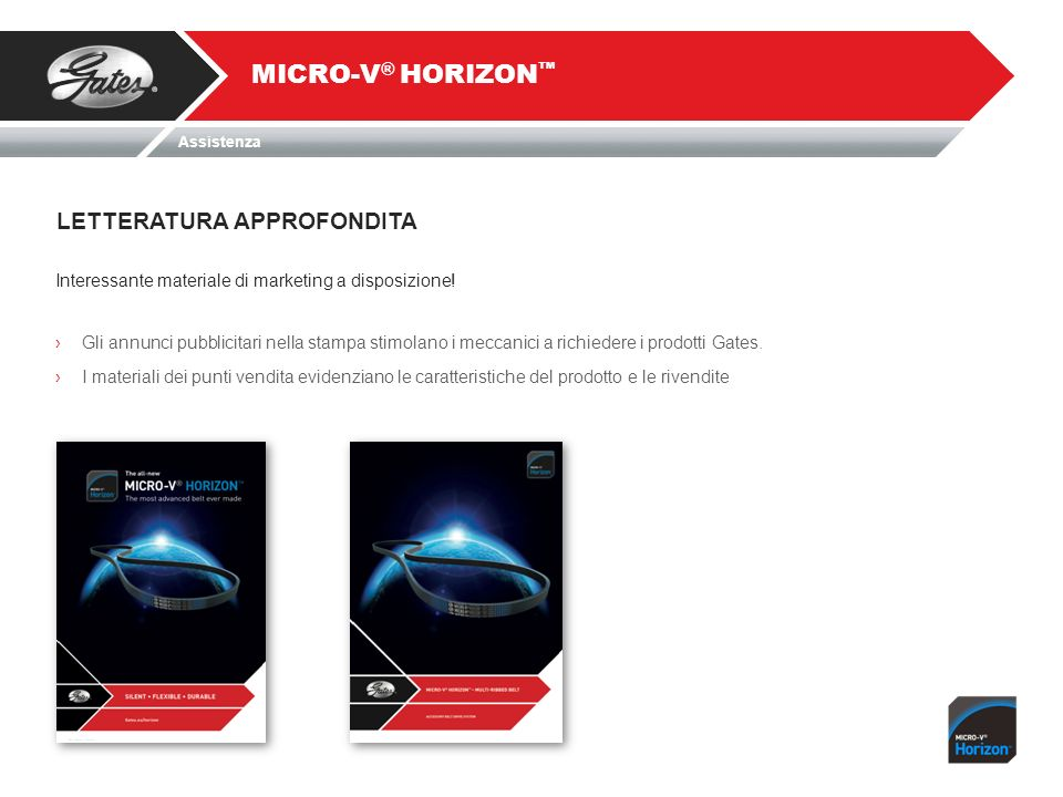 MICRO-V® HORIZON™ LETTERATURA APPROFONDITA