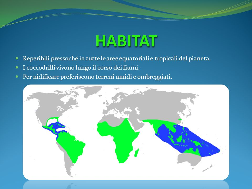 HABITAT Reperibili pressoché in tutte le aree equatoriali e tropicali del pianeta. I coccodrilli vivono lungo il corso dei fiumi.