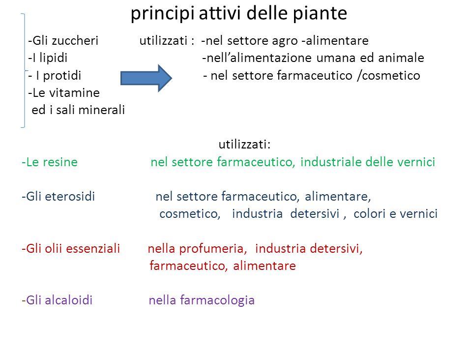 principi attivi delle piante