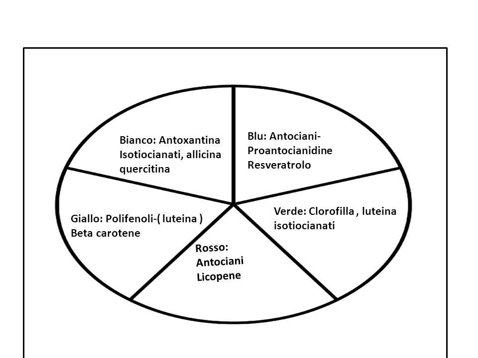 Blu: Antociani- Proantocianidine. Resveratrolo. Bianco: Antoxantina. Isotiocianati, allicina. quercitina.
