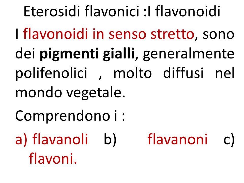 Eterosidi flavonici :I flavonoidi