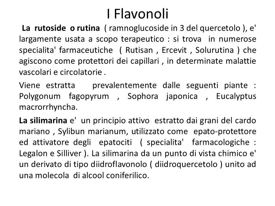 I Flavonoli