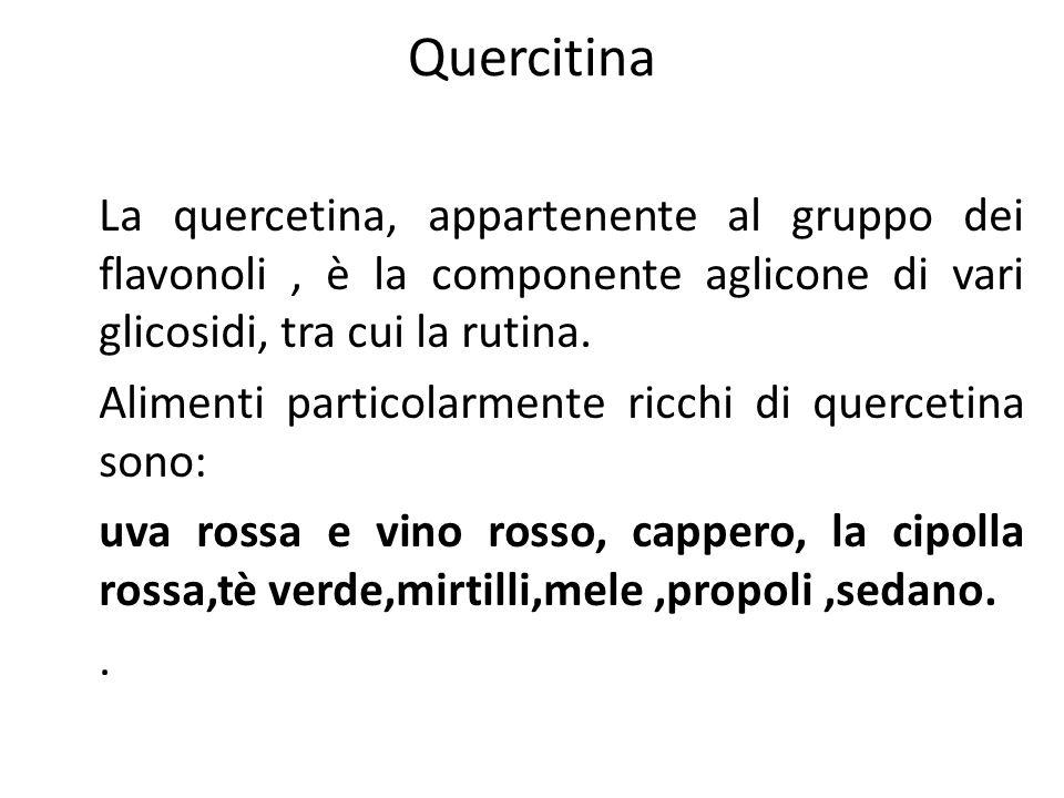 Quercitina La quercetina, appartenente al gruppo dei flavonoli , è la componente aglicone di vari glicosidi, tra cui la rutina.