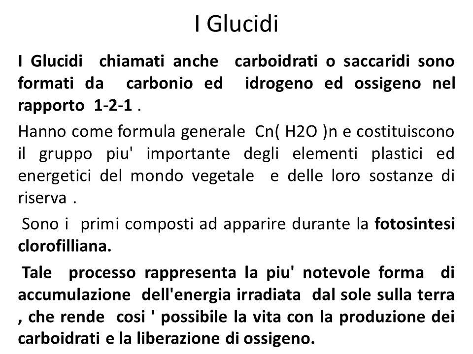 I Glucidi I Glucidi chiamati anche carboidrati o saccaridi sono formati da carbonio ed idrogeno ed ossigeno nel rapporto 1-2-1 .