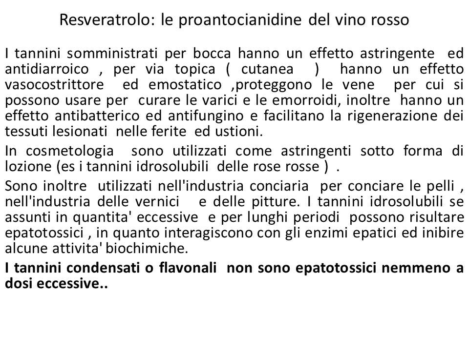 Resveratrolo: le proantocianidine del vino rosso