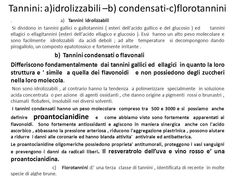 Tannini: a)idrolizzabili –b) condensati-c)florotannini