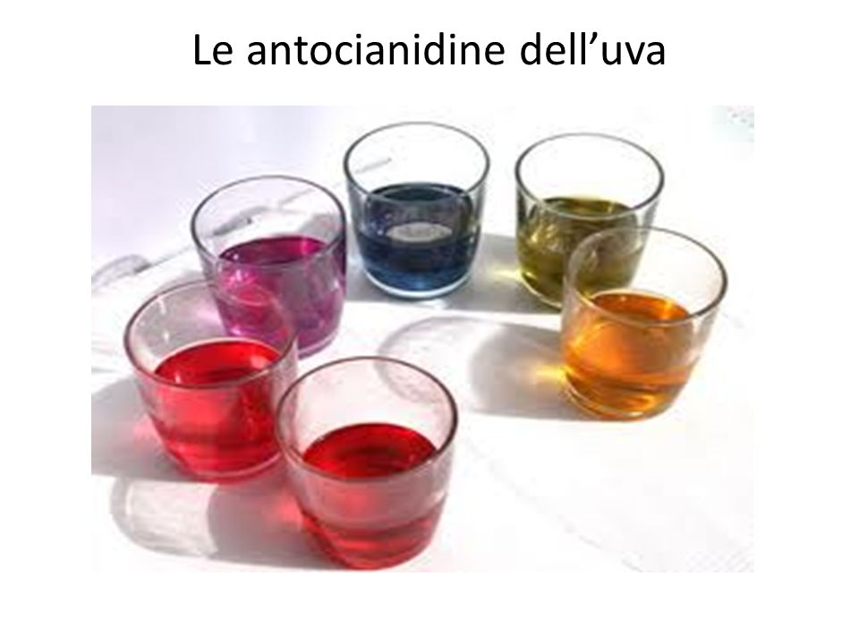 Le antocianidine dell'uva