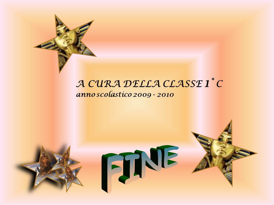 A CURA DELLA CLASSE 1° C anno scolastico 2009 - 2010 FINE