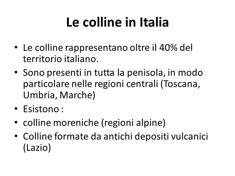 Le colline in Italia Le colline rappresentano oltre il 40% del territorio italiano.