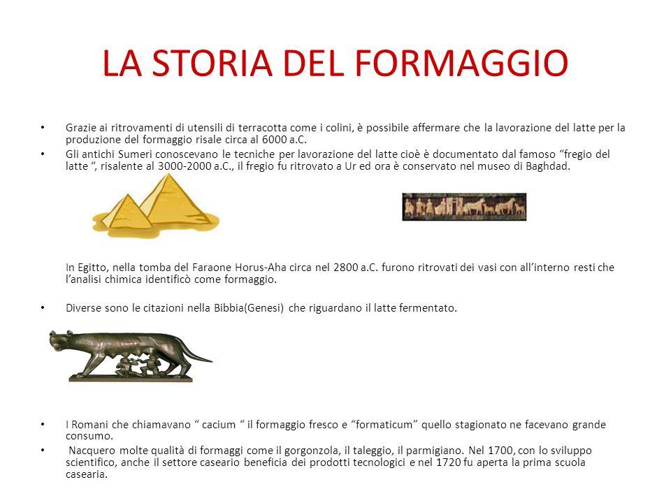 LA STORIA DEL FORMAGGIO