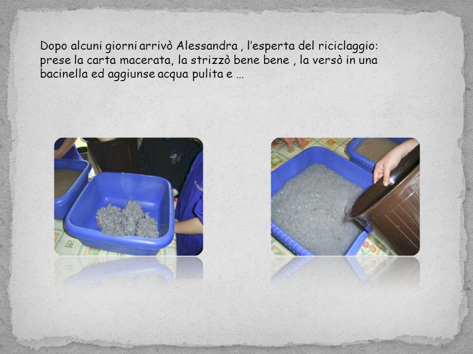 Dopo alcuni giorni arrivò Alessandra , l'esperta del riciclaggio: prese la carta macerata, la strizzò bene bene , la versò in una bacinella ed aggiunse acqua pulita e …