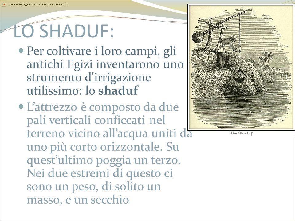 LO SHADUF: Per coltivare i loro campi, gli antichi Egizi inventarono uno strumento d irrigazione utilissimo: lo shaduf.