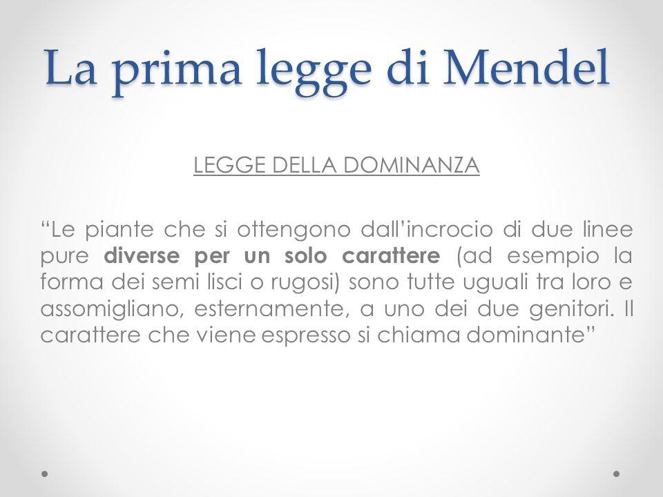 La prima legge di Mendel
