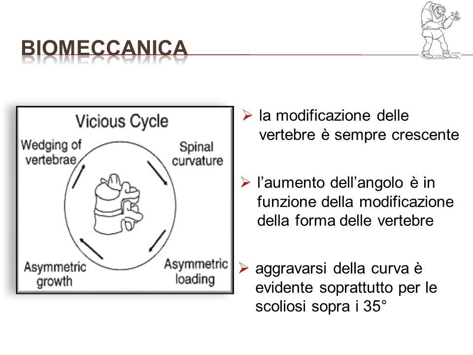 bioMECCANICA la modificazione delle vertebre è sempre crescente
