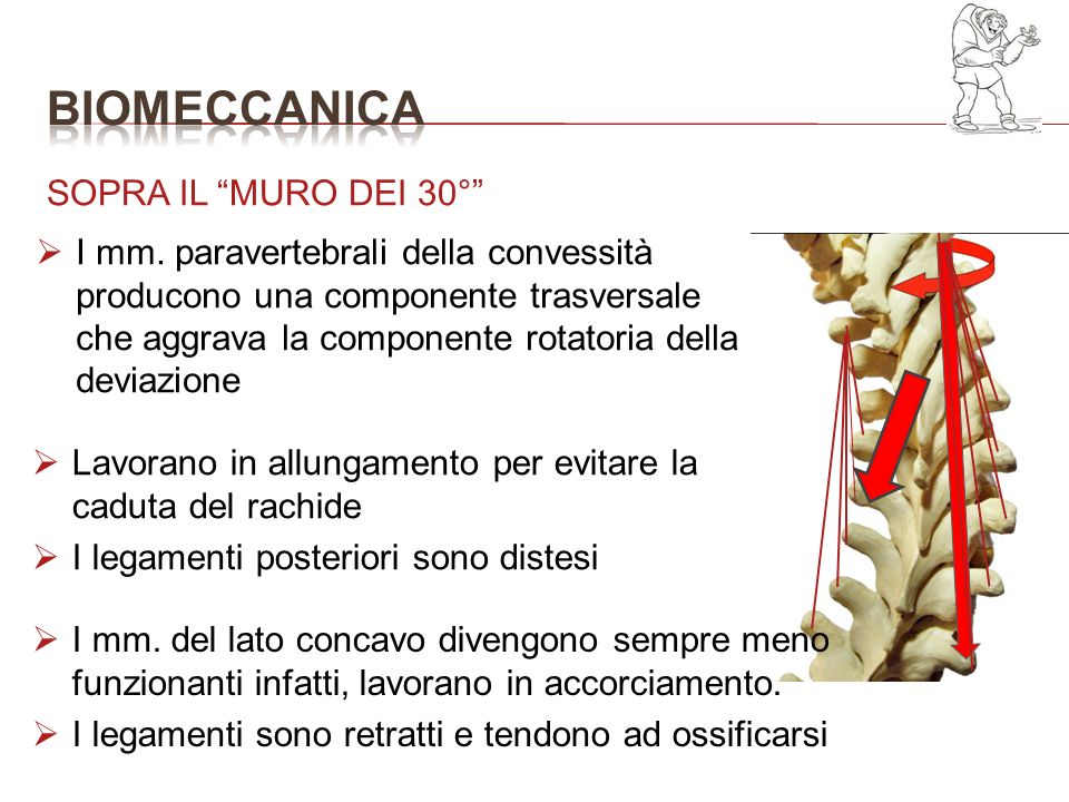 bioMECCANICA SOPRA IL MURO DEI 30°